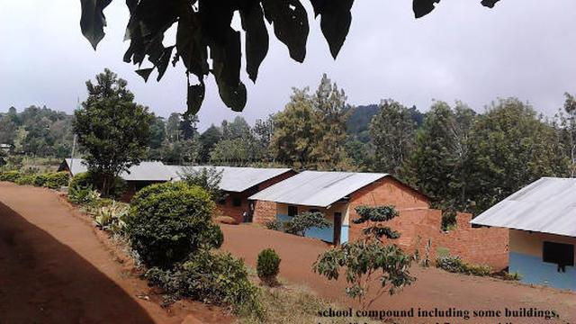 Help and support our Primary and Secondary schools at Kimanganuni Village in Moshi, Kilimanjaro's work photo