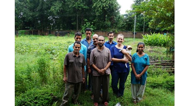 Veterinarian's team photo