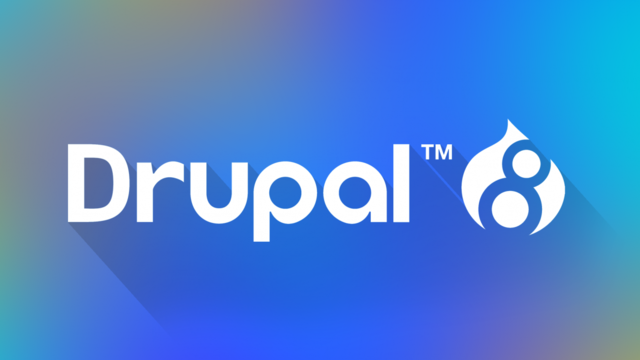 Drupal Developer 's project photo