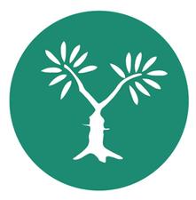 MEJDI Tours logo