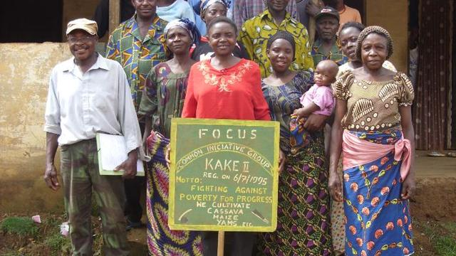 Consultant to Support Expansion of Rural Agricultural (Rice) Project 's team photo