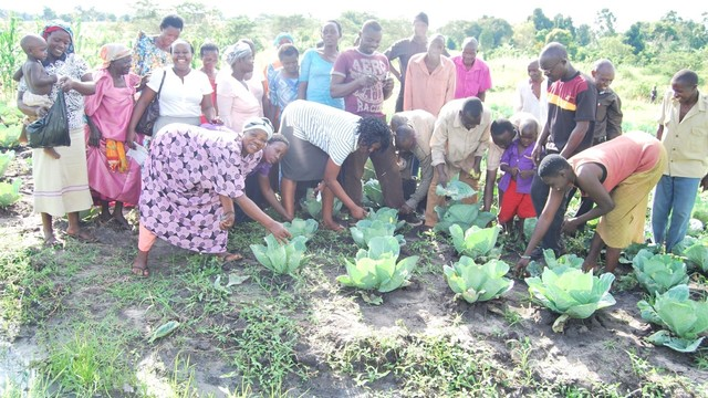 Agriculture Expert to Train Women in Vegetable Farming in Uganda's project photo