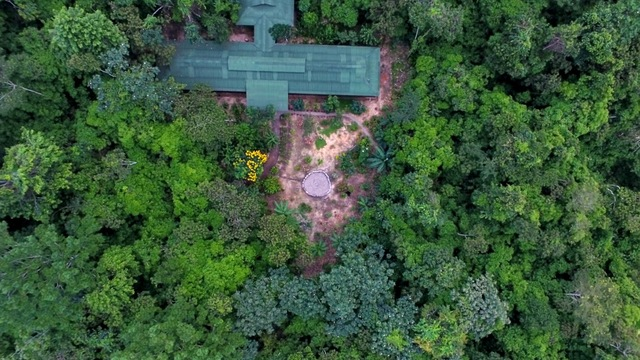 Fundraiser/Marketer to Protect the Amazon Rainforest's project photo