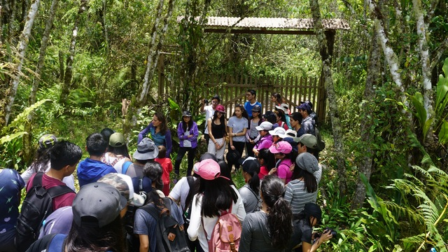 Learn social impact frameworks and use it for: Conservation education