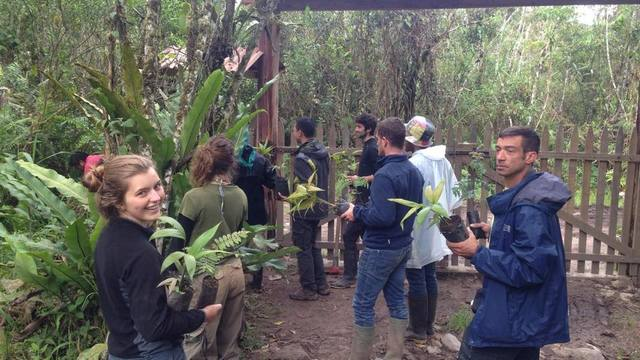 Fundraising Strategy to Support Conservation of the Amazon's project photo