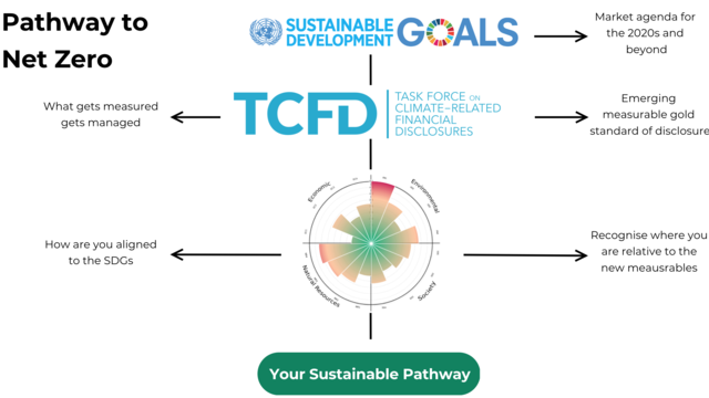 Learn social impact frameworks and use it for: Facilitating a sustainable pathway for organisations