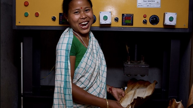 Learn social impact frameworks and use it for: Nurturing Lives, Sustaining Livelihoods