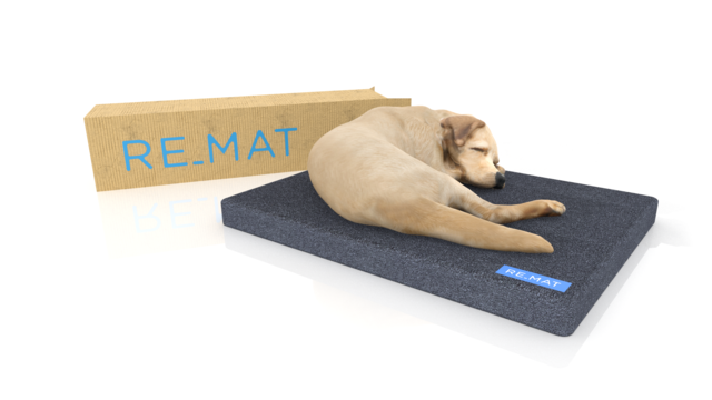 Learn social impact frameworks and use it for: Making circular economy pet products