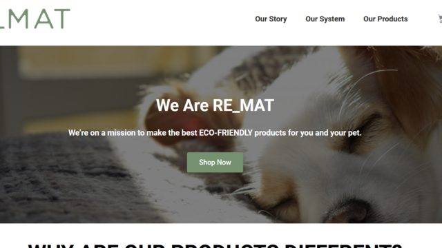 Copywriting & UX Expert needed for Wordpress Eco-Friendly Website's project photo