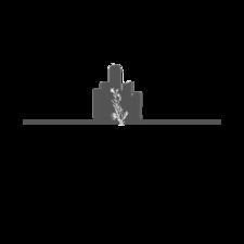 Belle Detroit logo